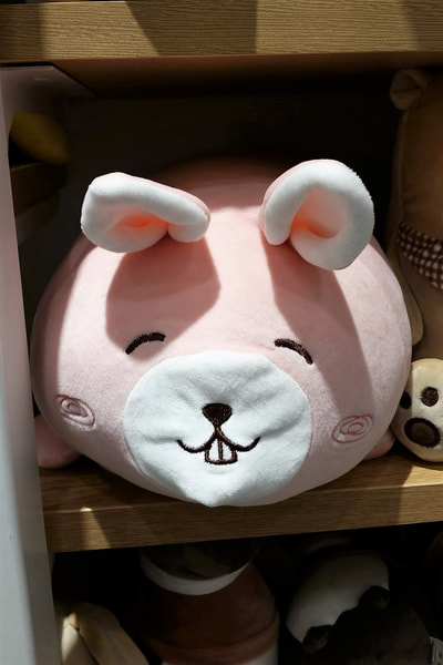 Can't help but be reminded of Kang Daniel seeing this cushion